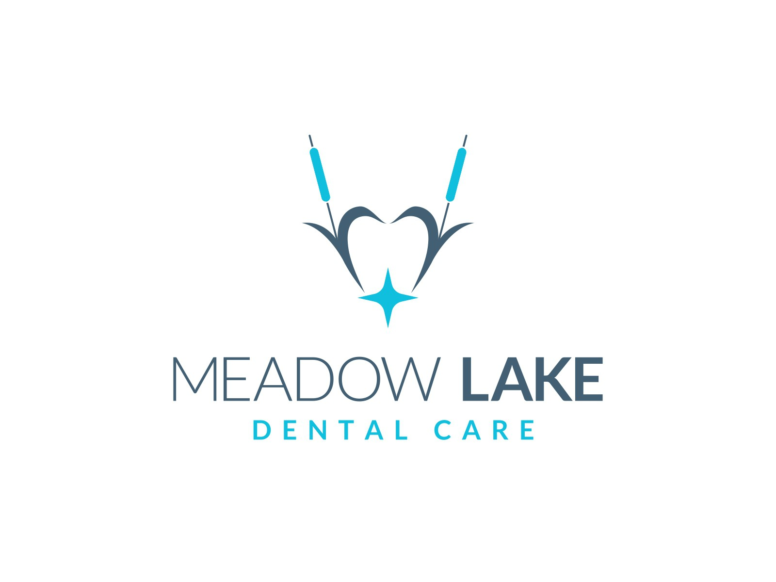 Meadow Lake Dental Care - A Dental Practice in the Chicago Suburbs