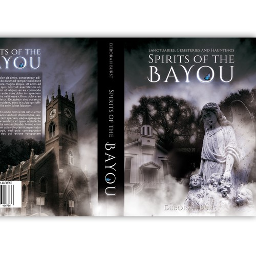 Book Cover that follows a trail of Historic Churches and Cemeteries