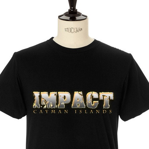 Impact 345 needs a bold and trendy t-shirt for their group of teens!