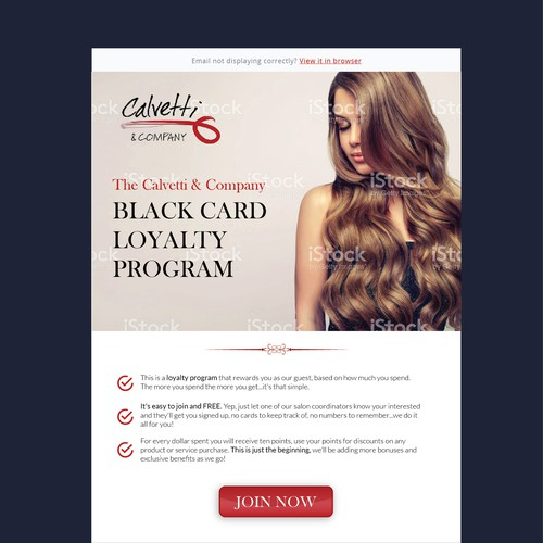 Email Design for salon customer.