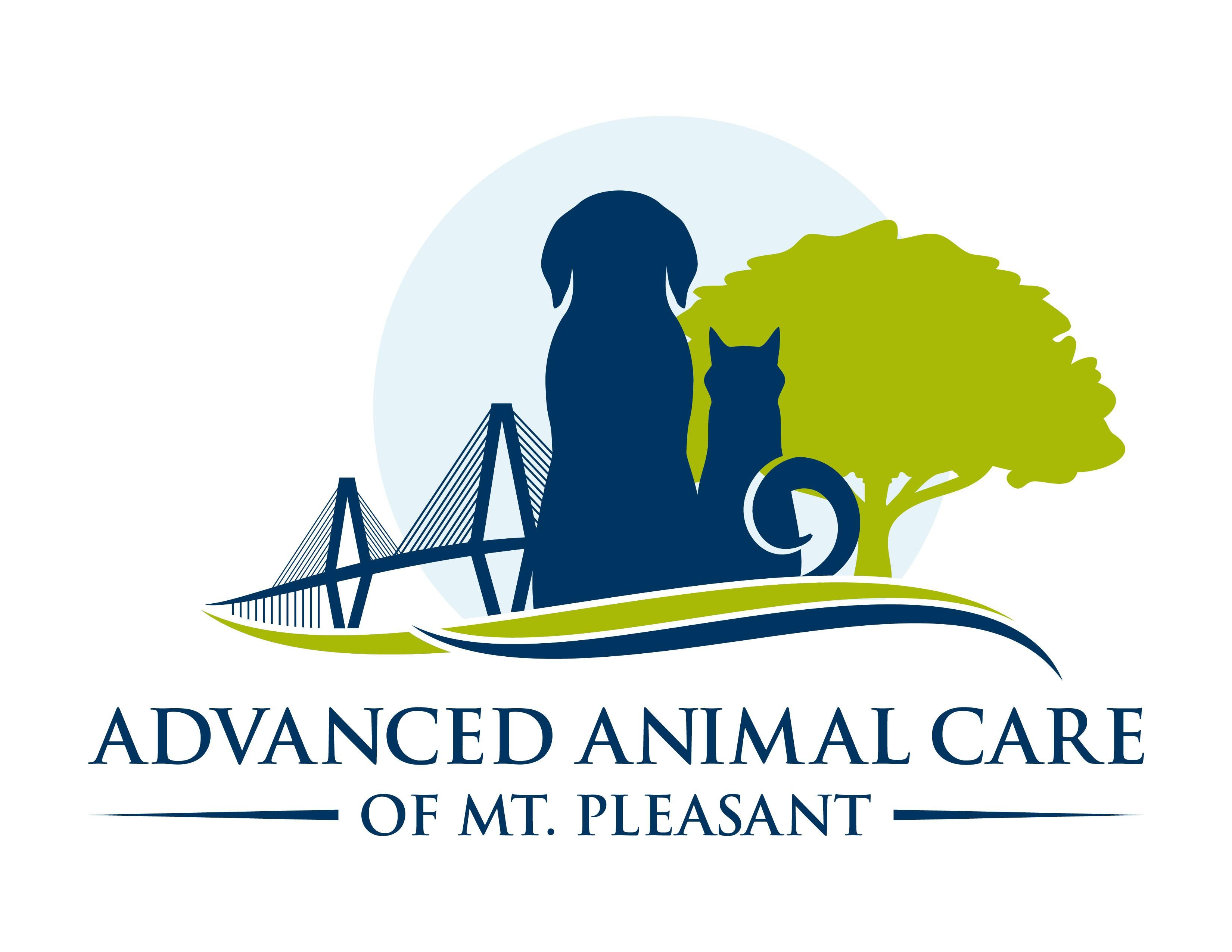 Create a vibrant new logo for small animal veterinary hospital