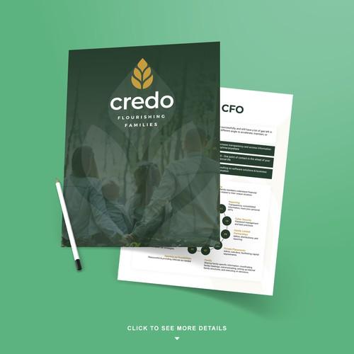 Financial Business Brochure