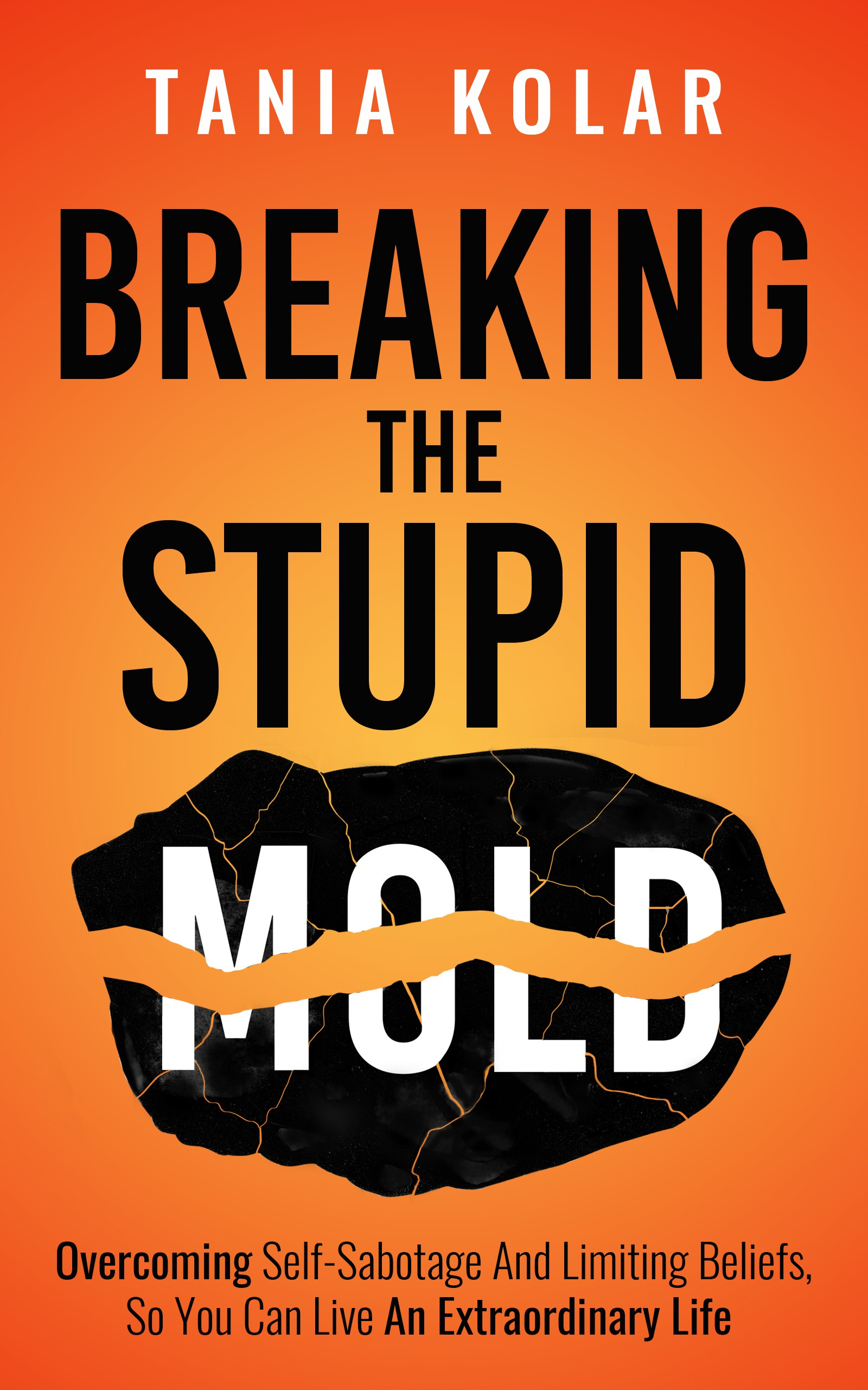 eBook cover - Breaking the Stupid Mold