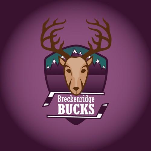 Breckenridge Bucks Semi Professional Ice Hockey Team
