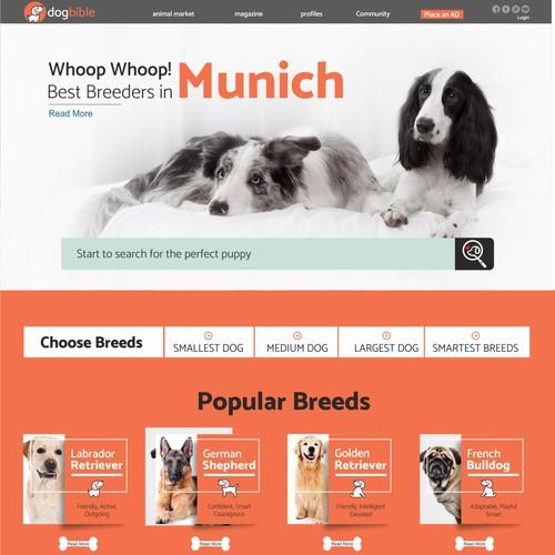 Webdesign for online dog platform / marketplace / magazine