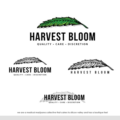 Harvest Bloom