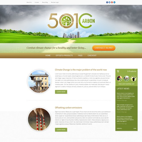 501Carbon: Web Design