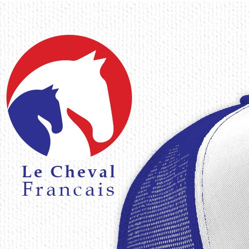 Sleek, modern, stylish logo for Horse Trainer with French flag colors