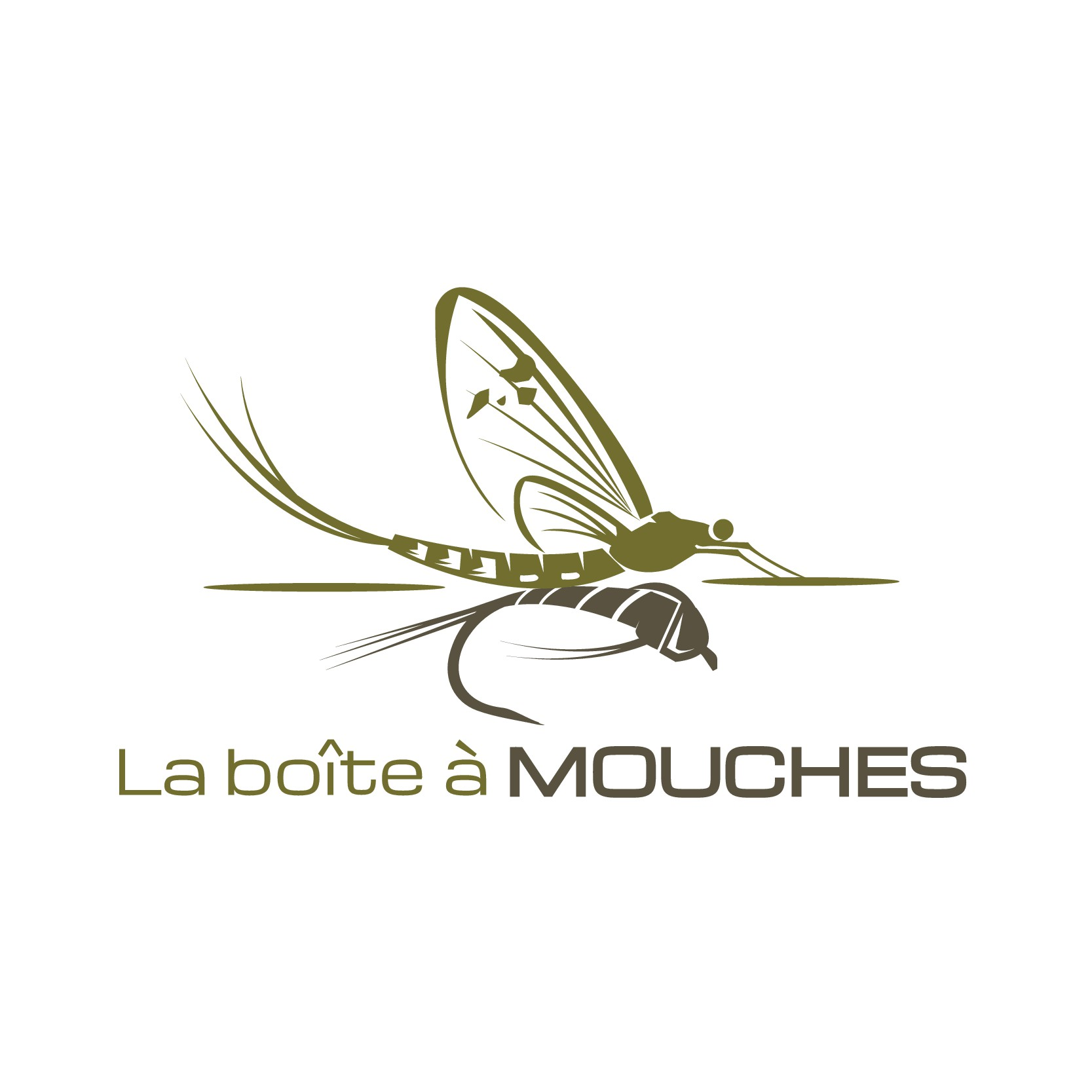 LOGO design for website specialized  in the sale of fishing fly tackle