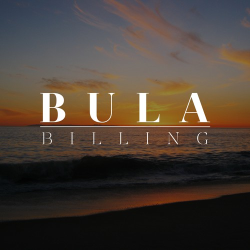 Classy and fresh logo For billing company