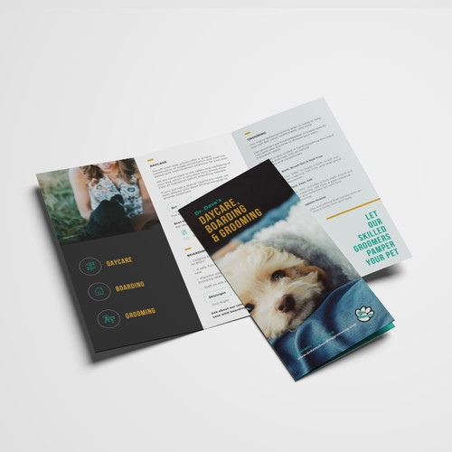 Trifold brochure for Dr. Dave's Daycare, Boarding & Grooming