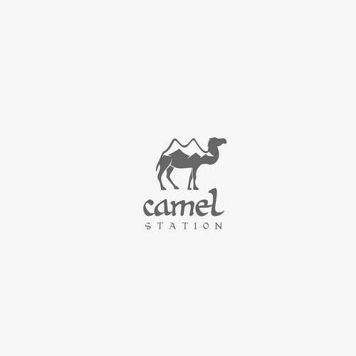 camel logo design project