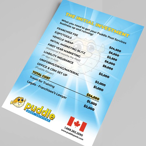Puddle Pool Services Initial Investment Flyer (Canada)