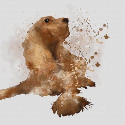Mirro dog illustration A