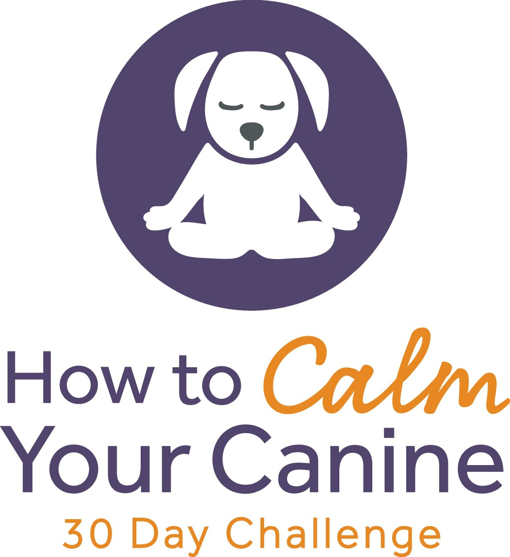 How To Calm Your Canine: 30 Day Challenge