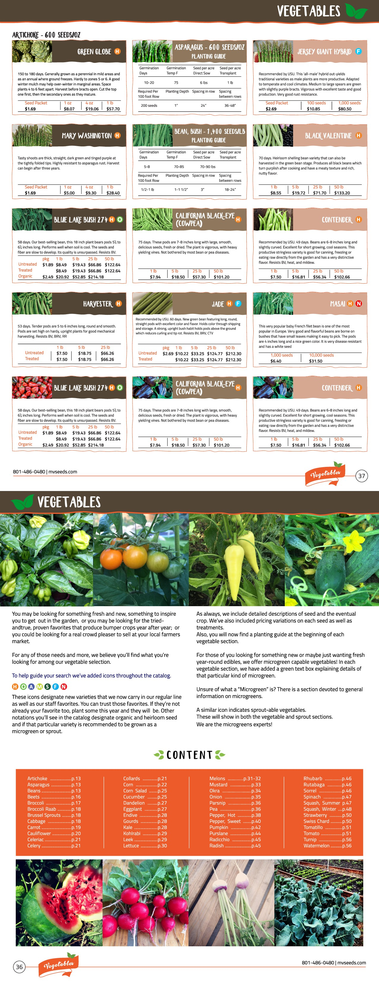 Catalog Template Design - for Seed Company