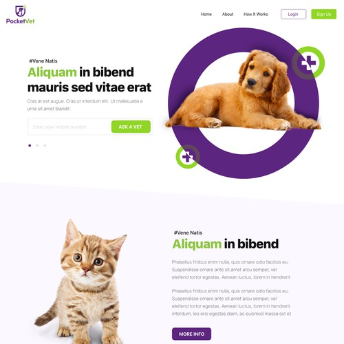 Vet care website design