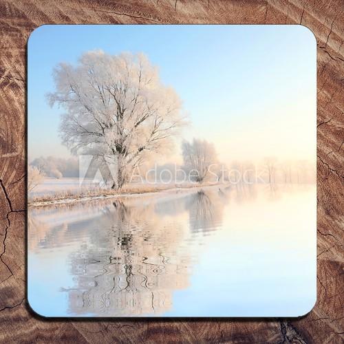 Winter Design Winner for Cozy Coasters Brand