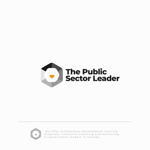 The Public Sector Leader
