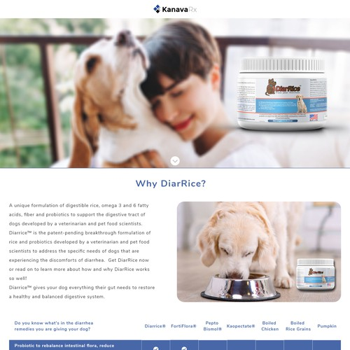 Web Design Landing Page for Dog Probiotic DiarRice