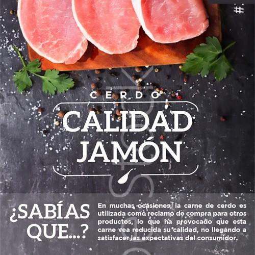 CALIDAD JAMÓN