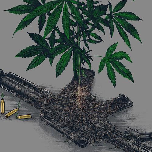 WAR on WEED