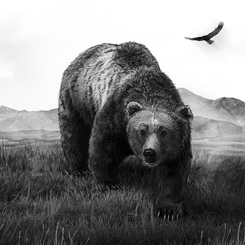 The Great Alaskan Grizzly Bear