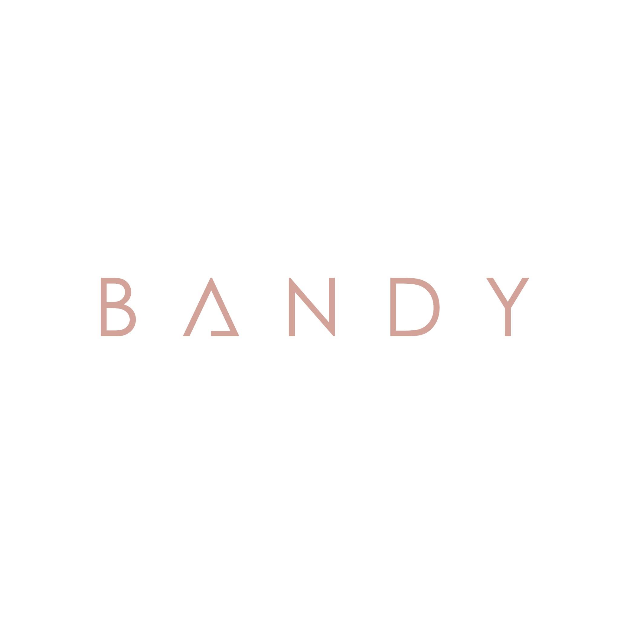 The Bandy Shop