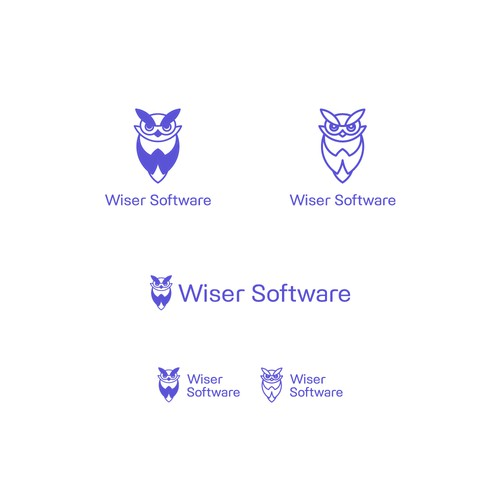 Logo concept for Wiser Software