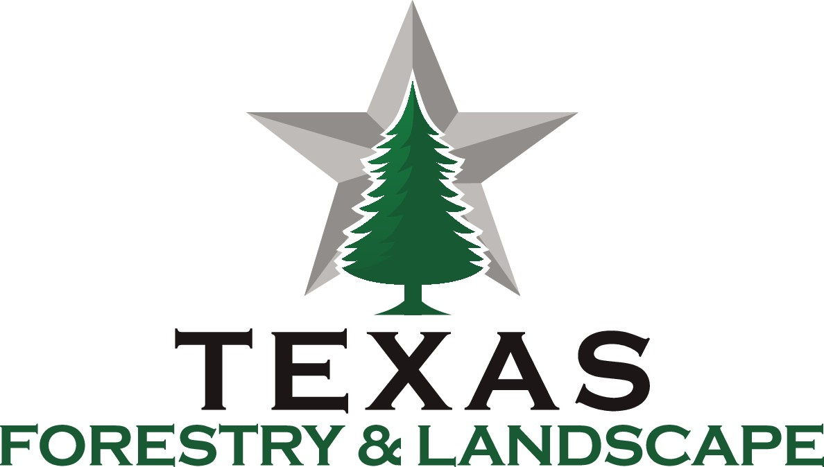 Texas Forestry and Landscape