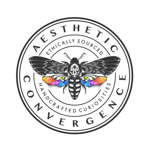 Logo Design For Aesthetic Convergence