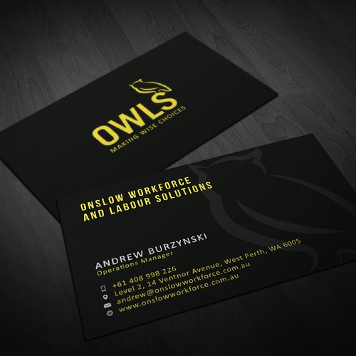 Create the next logo and business card for OWLS