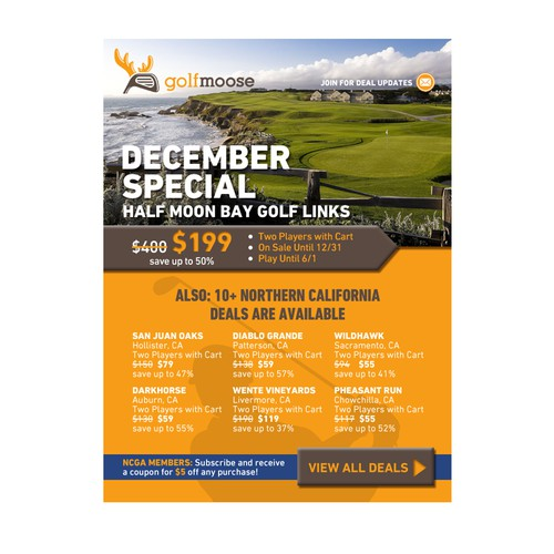 golfmoose - Email Marketing Flyer