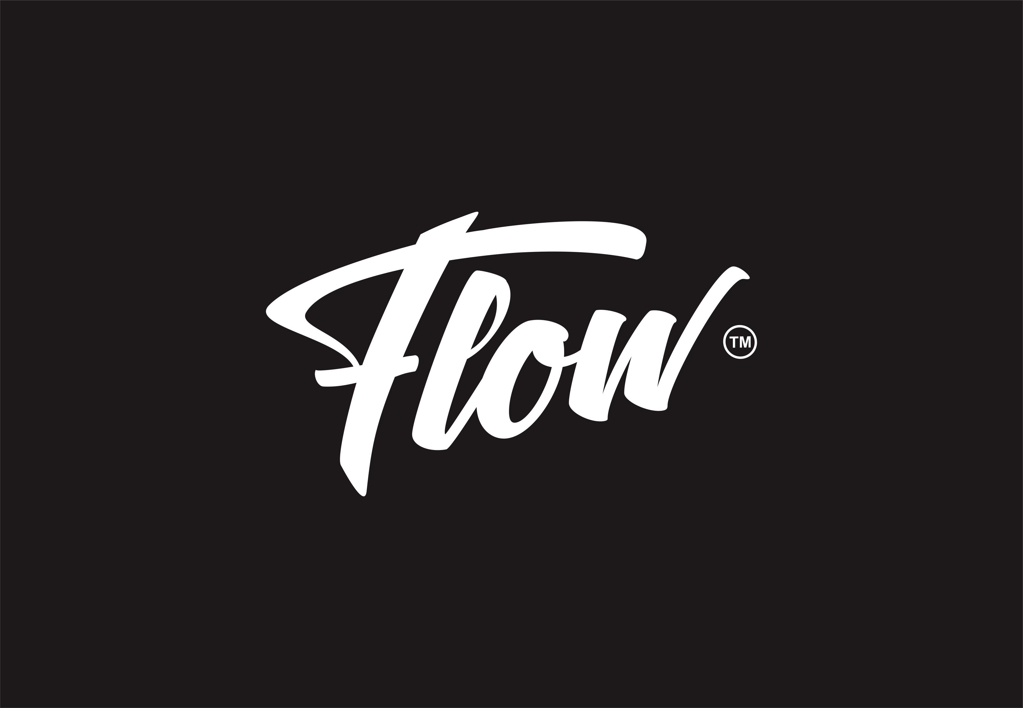 "Freehand Logotype Design for Streetwear brand ""Flow"""