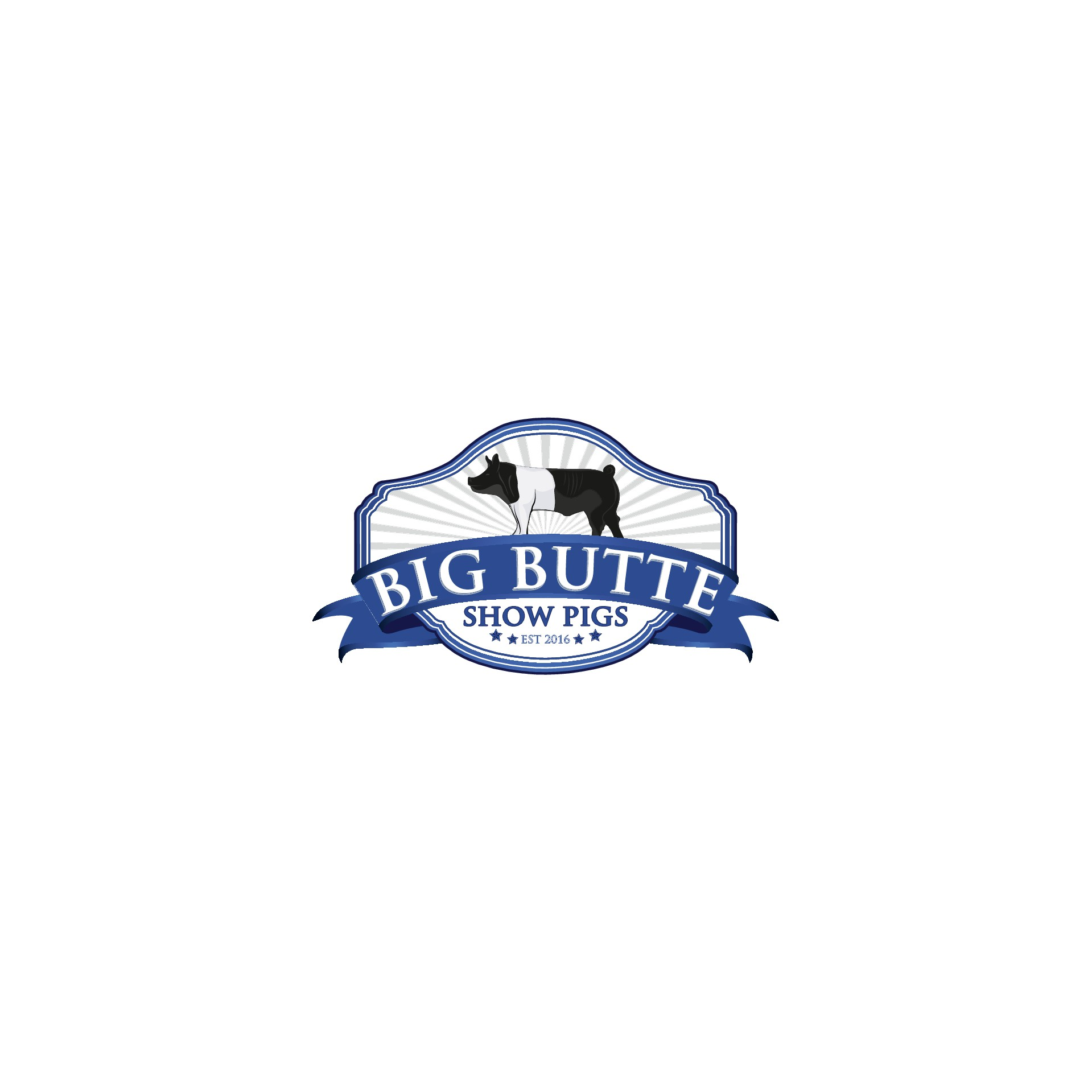Big Butte Show Pigs needs a LOGO catchy to eyes and easy to remember!
