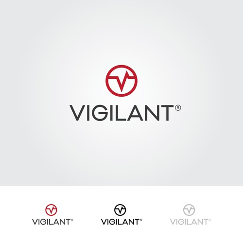 Vigilant Indentity