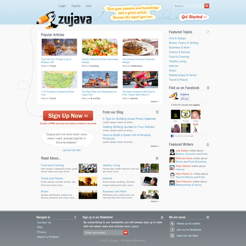 Website design for Zujava