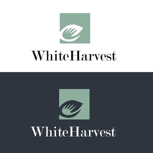Simple Formal Logo for White Harvest