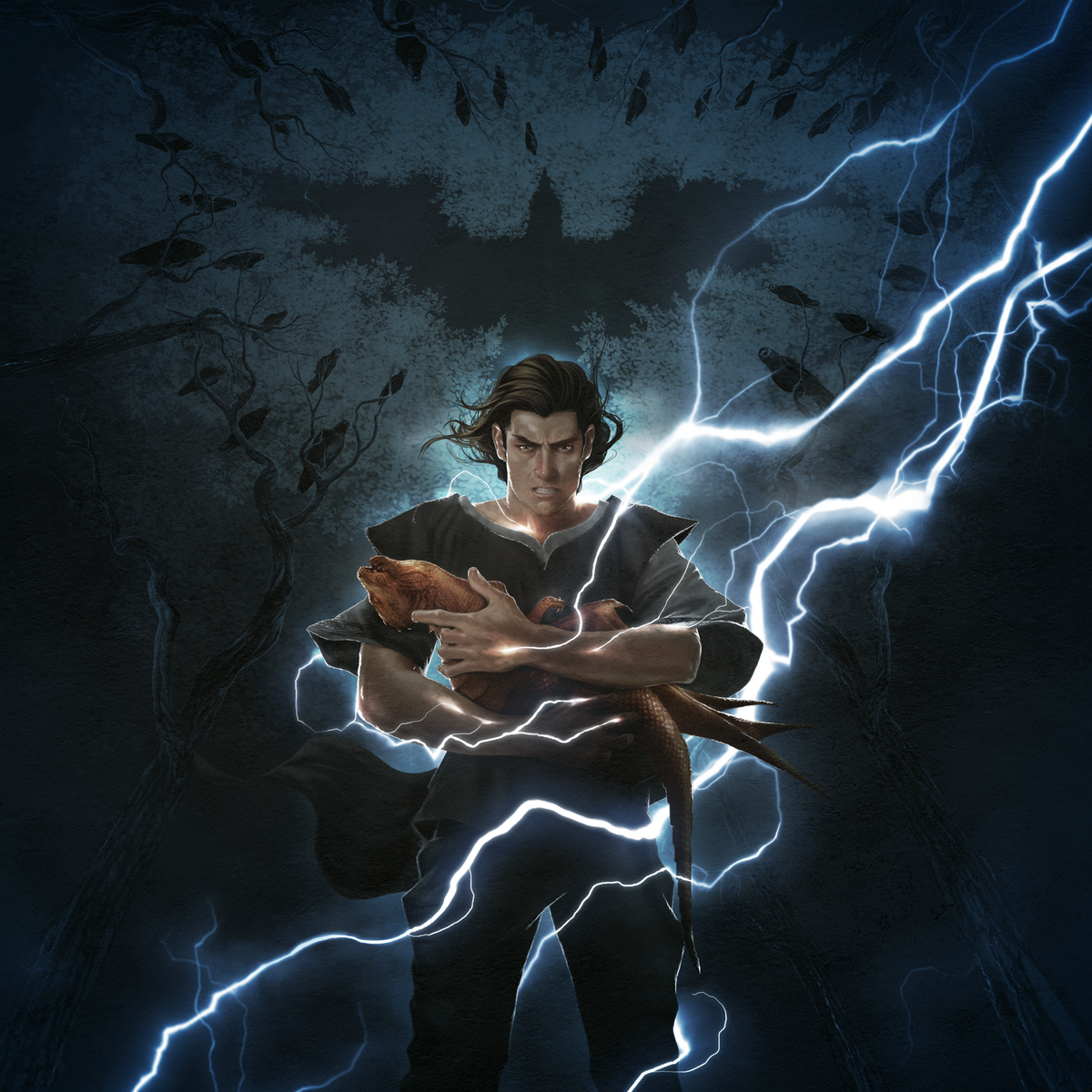 Stormcrow Book Cover
