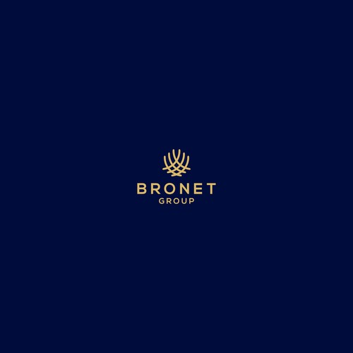 finance logo concept for bronet group