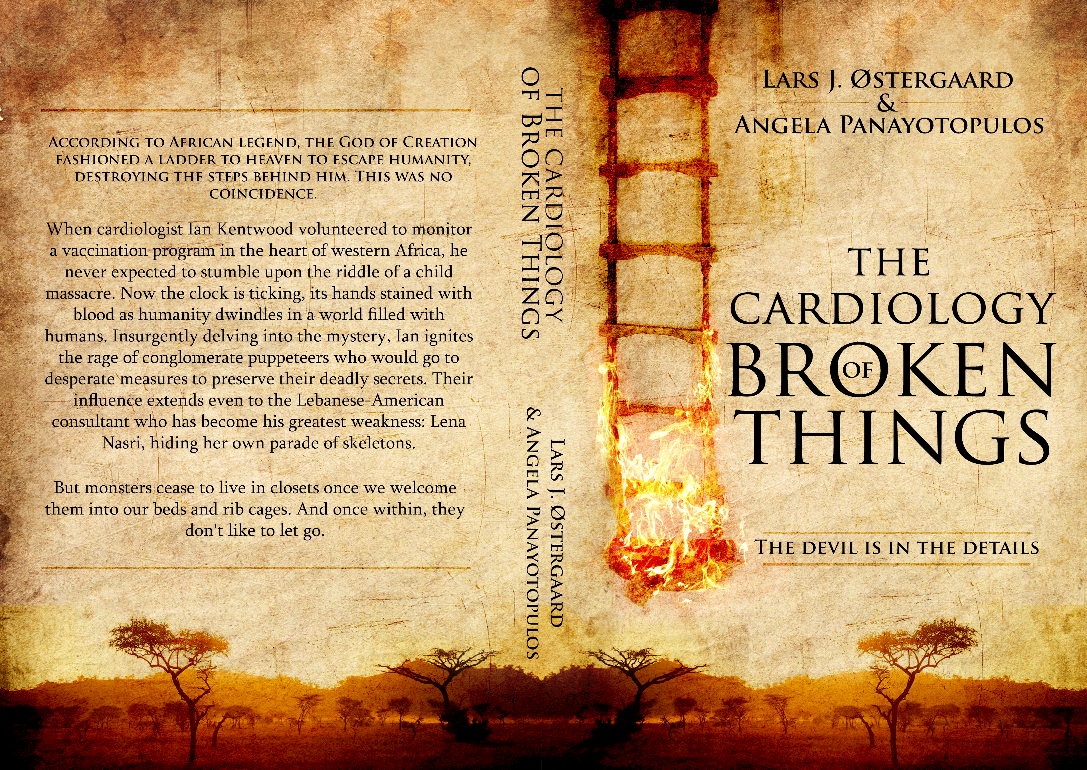 """Provide """"The Cardiology of Broken Things"""" (a novel) with a beautifully evocative cover :)"""