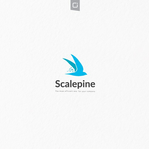 Scalepine