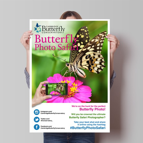 We need a fun and engaging poster for Butterfly Photo Safari!