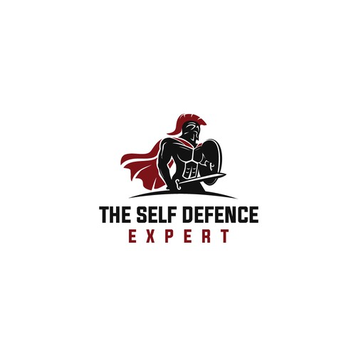 The Self Defence Expert